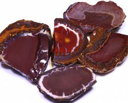 457 CTS YOWAH OPAL SLICED NUTS CRO-06