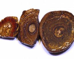 398 CTS YOWAH OPAL SLICED NUTS CRO-15 CROWN OPAL