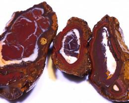 366 CTS YOWAH OPAL SLICED NUTS CRO-78