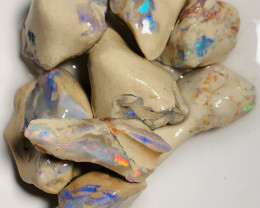 Untouched Rough Nobby Opals with Bright Colours to Explore