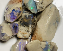 110 CTs Untouched Rough Nobby Opals to Gamble & Explore #2013