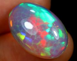 9.47cts Natural Ethiopian Welo Opal / HBF7988