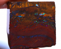 Koroit Boulder Opal Rough  DO-2277 - downunderopals