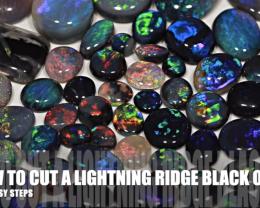 HOW TO CUT A LIGHTNING RIDGE BLACK OPAL  53FROGS