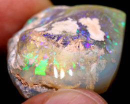 74.95 CTS    CLAM SHELL OPALISED FOSSIL  FO-1740   fossilopals