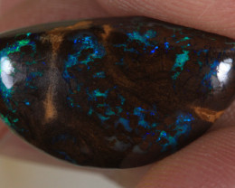 NO RESERVE!! Queensland Boulder Opal [35636] 53FROGS