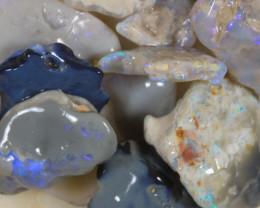 NO RESERVE!! #8  -Beginners Rough Opal -Lightning Ridge [35818] 53FROGS