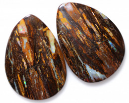 96.65 CTS KOROIT WOOD FOSSIL PAIRS FROM ELUSIVE MINE [FJP4604]4