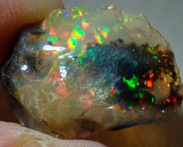 9.5ct Natural Ethiopian Welo Rough Opal