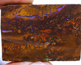 Koroit Boulder Opal Rough  DO-2305 - downunderopals