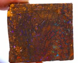 Koroit Boulder Opal Rough  DO-2306 - downunderopals