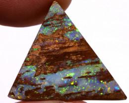 Boulder Opal Wood fossil  AOH-714 - australianopalhunter