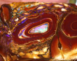 166.70cts Yowah Opal Rough Slice D-61   Daviddarbyopals