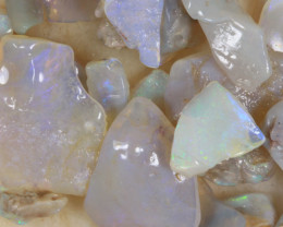 NO RESERVE!! #9 Opal Shells from Coober Pedy-  [36282] 53FROGS