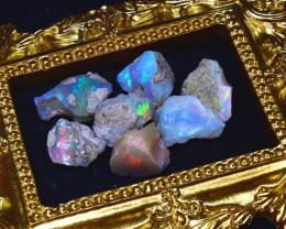 48.64Ct Multi Color Play Ethiopian Welo Opal Rough Lot G1906/R2
