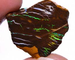Koroit Boulder Opal Faced Rough DO-2525  - downunderopals