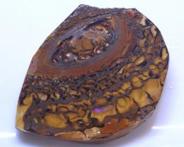 80.63 Carats Koroit Opal  Rough Rubs ANO-2815