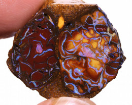 Koroit Boulder Opal Faced Rough DO-2534  - downunderopals
