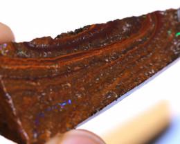 Koroit Boulder Opal Faced Rough DO-2559  - downunderopals