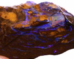 Koroit Boulder Opal Faced Rough DO-2589  - downunderopals