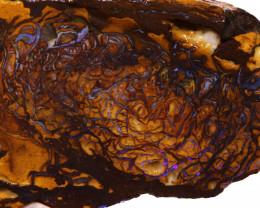 Koroit Boulder Opal Faced Rough DO-2601  - downunderopals