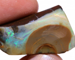 Boulder Beginners Opal Exposed Rough DO-2667 - downunderopals