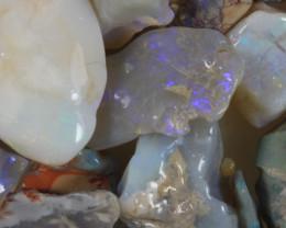 NO RESERVE!! #8  -Beginners Rough Opal -Lightning Ridge [37107] 53FROGS