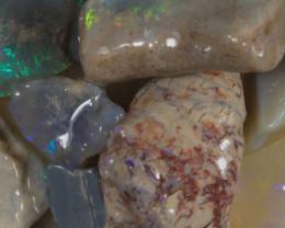 #8  -Beginners Rough Opal -Lightning Ridge [37114]