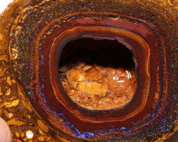 Yowah Opal Beginners Rough DO-2824  downunderopals