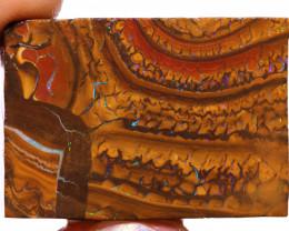 Yowah Opal Beginners Rough DO-2838  downunderopals