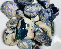 690 CTs of Big Bright Black Rough Nobby Opals For Gamble#398