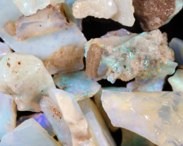 NO RESERVE!! #8  Beginners Andamooka  Rough Opal [38923] 53FROGS