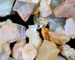 NO RESERVE!! #8  Beginners Andamooka  Rough Opal [38928] 53FROGS