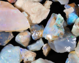 NO RESERVE!! #8  Beginners Andamooka  Rough Opal [38929] 53FROGS