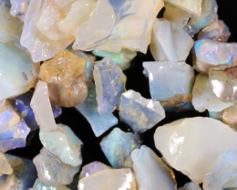 NO RESERVE!! #8  Beginners Andamooka  Rough Opal [38942] 53FROGS