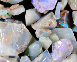 NO RESERVE!! #8  Beginners Andamooka  Rough Opal [38948] 53FROGS