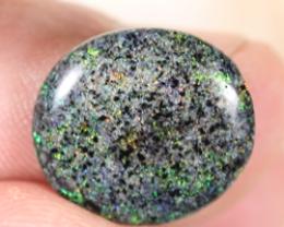 NO RESERVE!! Andamooka Matrix opal [39529] 53FROGS