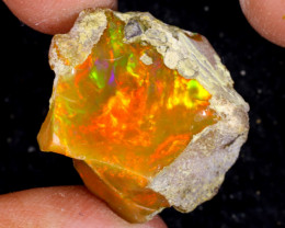 24cts Natural Ethiopian Welo Rough Opal / WR9535