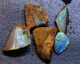 9.20cts Boulder Pipe Opal Rough Parcel  ADO-A411   adopals