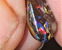 Koroit boulder opal with reds