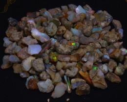 204Grams  1020Ct Multi Color Play Ethiopian Welo Opal Rough JN230