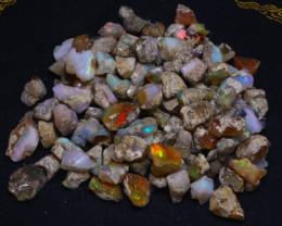 205Grams 1025Ct Multi Color Play Ethiopian Welo Opal Rough  HN57