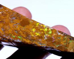 218.95 cts Yowah Opal Rough Slice D-184   Daviddarbyopals