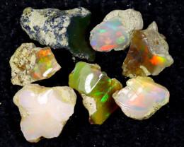 53cts Natural Ethiopian Welo Rough Opal / PA1262