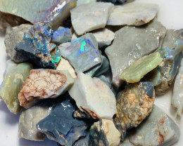 227 CTs of Bright Rough Opals With Cutters- Good Luck#966