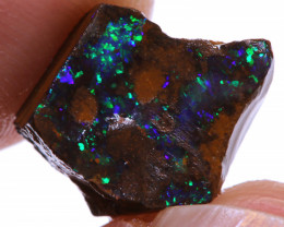 Boulder Opal Beginners Rough DO-3162 - downunderopals