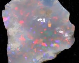 2.75 carats Lightning Ridge Dark Opal Rough ANO-3771