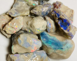 105 CTs of Bright Potential Rough Nobby Opals to Carve/Cut #42