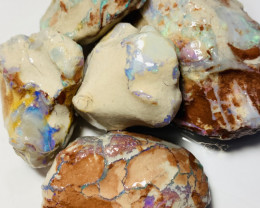 Big Size Select Untouched Bright Nobby Opals Full of Colours to Carve or Ke