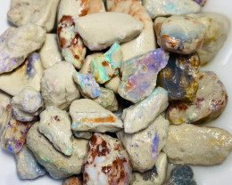 490 Cts of Rough Nobby Opals to Gamble & Explore